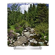 Vail Stream In The Summer 2 Shower Curtain