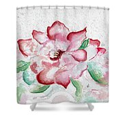 Valentine Rose Shower Curtain