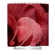 Valentines Day Love Shower Curtain