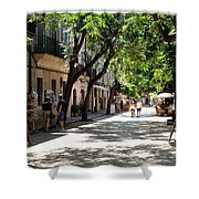 Valldemossa Street View Shower Curtain
