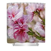 Valley Blossoms Shower Curtain