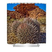 Valley Of Fire Barrels Shower Curtain
