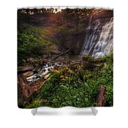 Valley Of Golden Light Shower Curtain