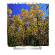 Valley Of The Five Lakes Trail Shower Curtain