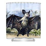 Vampire Bat Shower Curtain