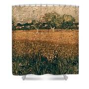 Van Gogh: Arles, 1888 Shower Curtain