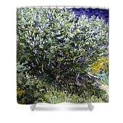 Van Gogh: Lilacs, 19th C Shower Curtain