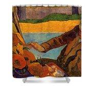 Van Gogh Painting Sunflowers 1888 Shower Curtain