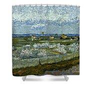 Van Gogh: Peach Tree, 1889 Shower Curtain