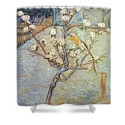Van Gogh: Peartree, 1888 Shower Curtain