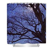 Van Gogh Tree Shower Curtain