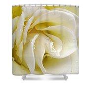 Vanilla Swirl Shower Curtain