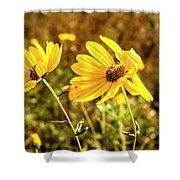 Variableleaf Sunflower Shower Curtain