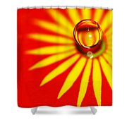 Variations On A Theme 31 Shower Curtain