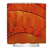 Various Orange Swirls Brown Accents Shiny 2 9132017  Shower Curtain