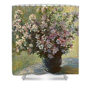 Vase Of Malva Flowers, 1880 Shower Curtain