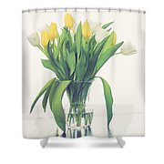 Vase Of Tulips Shower Curtain