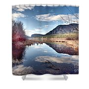 Vaseux Reflections Shower Curtain