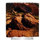 Vasquez Rocks And Stars Shower Curtain