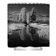 Vay Road Ditch Shower Curtain