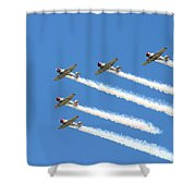 Vee Formation Shower Curtain