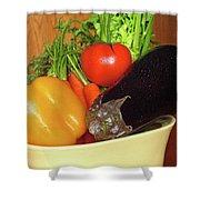 Vegetable Bowl Shower Curtain
