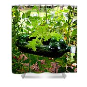 Vegetable Growing In Used Water Bottle 7 Shower Curtain
