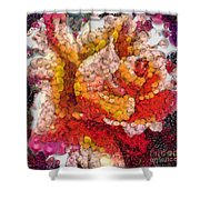 Vegged Out Rose Shower Curtain