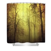 Veiled Trees Shower Curtain