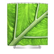 Veins Of Life #2 Shower Curtain