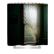 Velvet Afternoon Shower Curtain
