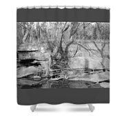 Veranda Shower Curtain