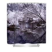 Verde Spring Reflections Shower Curtain