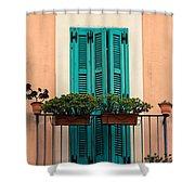 Verdigris Shutters Shower Curtain