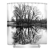 Verge Of Spring Shower Curtain