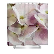 Verging On Violet Shower Curtain