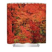 Vermont Autumn Shower Curtain