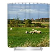 Vermont Country Life Shower Curtain