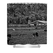 Vermont Farm With Cows Black And White Shower Curtain