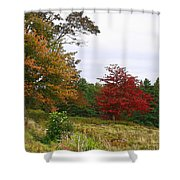 Vermont Roadside Color Shower Curtain