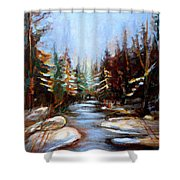 Vermont Stream Shower Curtain