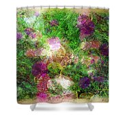 Vernal Equinox Shower Curtain