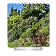 Veronica Spicata Royal Candles II Shower Curtain