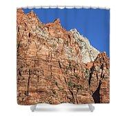 Vertical Forest Shower Curtain