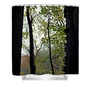 Vertical Limits Shower Curtain