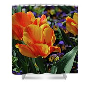 Very Pretty Colorful Yellow And Red Striped Tulip Shower Curtain