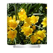 Very Sunny Yellow Flowers Shower Curtain