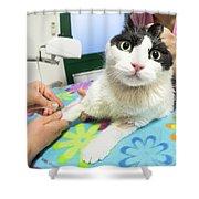 Veterinarian Cat Care Shower Curtain