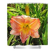 Vibrant Daylilly Shower Curtain