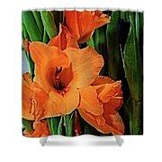 Vibrant Gladiolus Shower Curtain